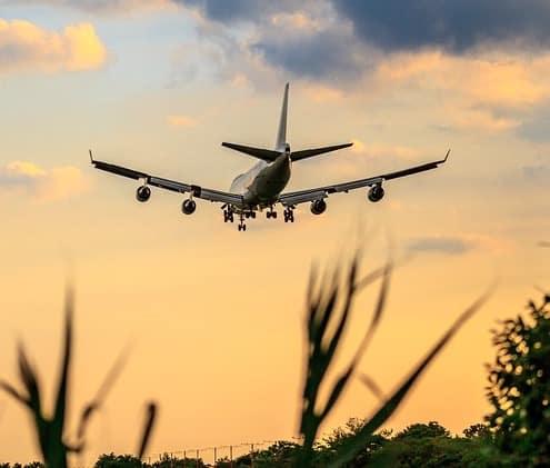 Fly der letter mod solnedgangen